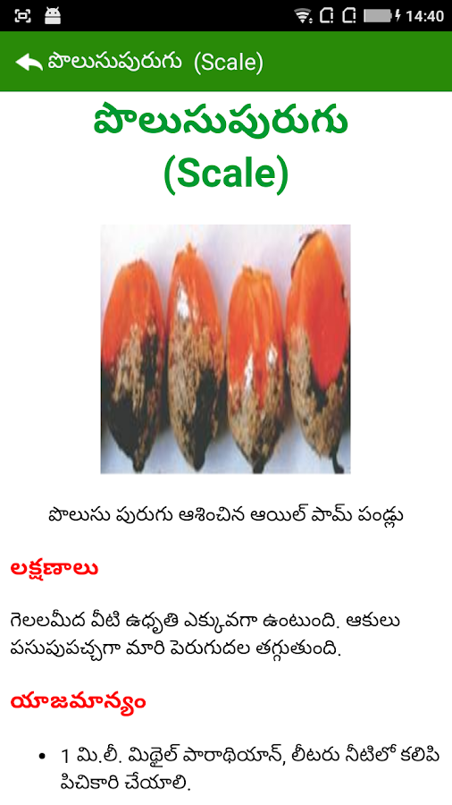Oil Palm Pests Telugu- screenshot