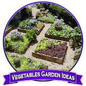 Vegetables Garden Ideas