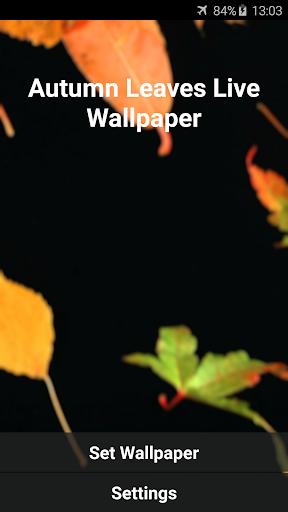 玩個人化App|秋はビデオライブ壁紙を残します免費|APP試玩