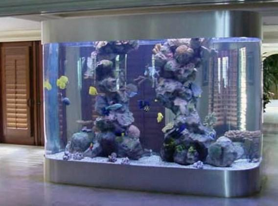 Fish Aquarium Design Ideas- screenshot