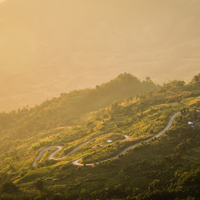 Beautful scenic at Phu-Tub-Berg by Natapong Paopijit - Landscapes Mountains & Hills ( curve, hill, mountain, warm, park, peak, thailand, petchaboon, shine, forest, road, shape, morning, landscape, sun, up, northern, sunset, rise, sunrise, light )