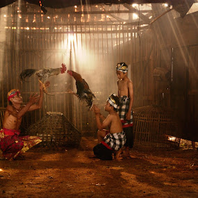Fight by Reinhard Pangaribuan - People Musicians & Entertainers