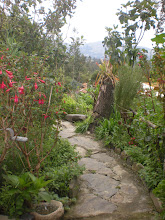 Photo: Path into garden 3 and the chakra.