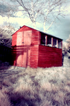 Photo: infrashed iv - the old shed (which is actually blue, but false colour is false)