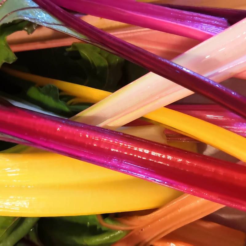 Cromie di vegetali  di patsie_1506