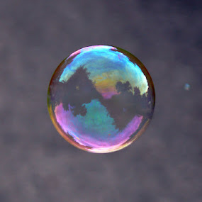 Bubble Trouble by Tanya Rossi - Artistic Objects Other Objects ( bubble, floating, bubbles, reflections )