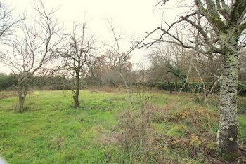 terrain à Chalon-sur-saone (71)