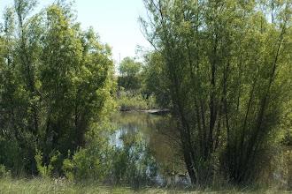 Photo: Northstar (North Area) Ponds