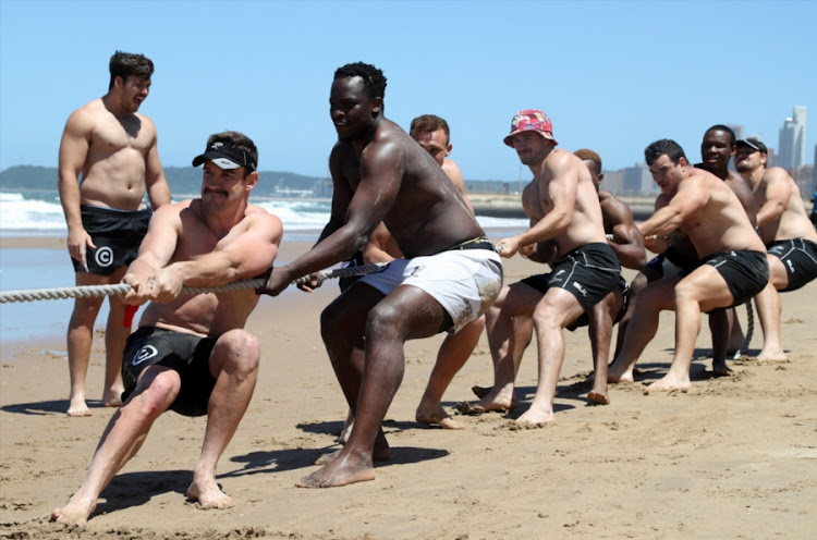 The Sharks players during The Cell C Sharks Kings of the Beach Challenge at Pirates LSC on November 18, 2016 in Durban, South Africa.