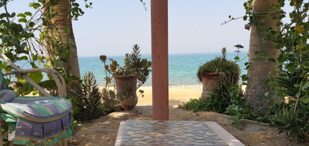 منظر من على شاطئ فندق دولفين بيتش ريزورت