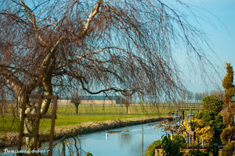Photo: 17 januari 2013. Op visite in de polder.. :-)