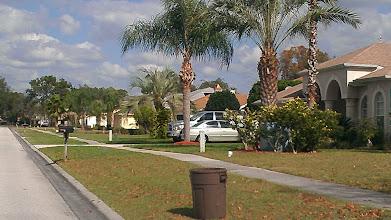 Photo: the neighborhood