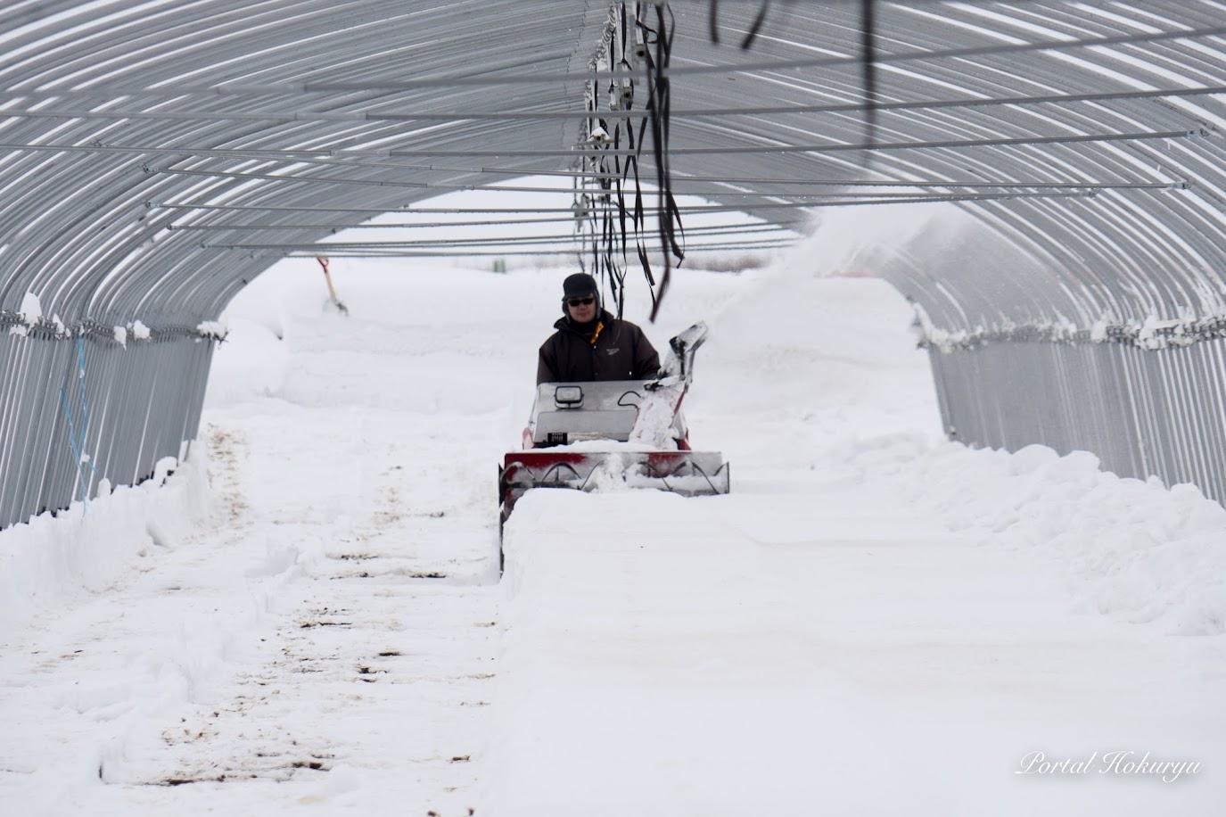 外では長男の隼斗さんが黙々と除雪作業