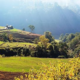 Lovely village by Nepali Kiran Pandit - Landscapes Mountains & Hills ( nepal )