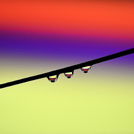 three waterdrops by Paul Wante - Abstract Water Drops & Splashes ( abstract, colors, three, waterdrops, photography )
