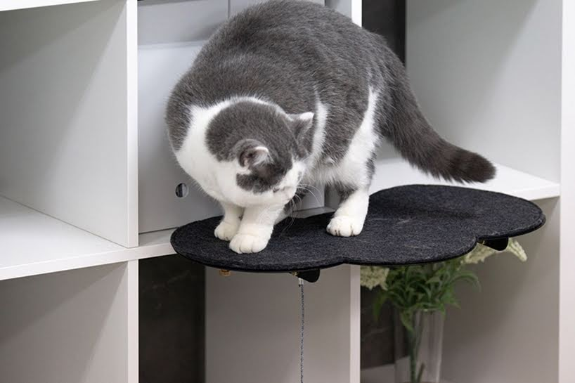 Plataformas de observación y juego para gatos se unen a los muebles de la casa