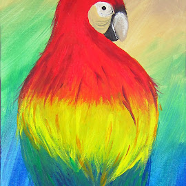 Amazon Parrot by Anita Elder - Painting All Painting ( feathered, painting, acrylic, bird, parrot )