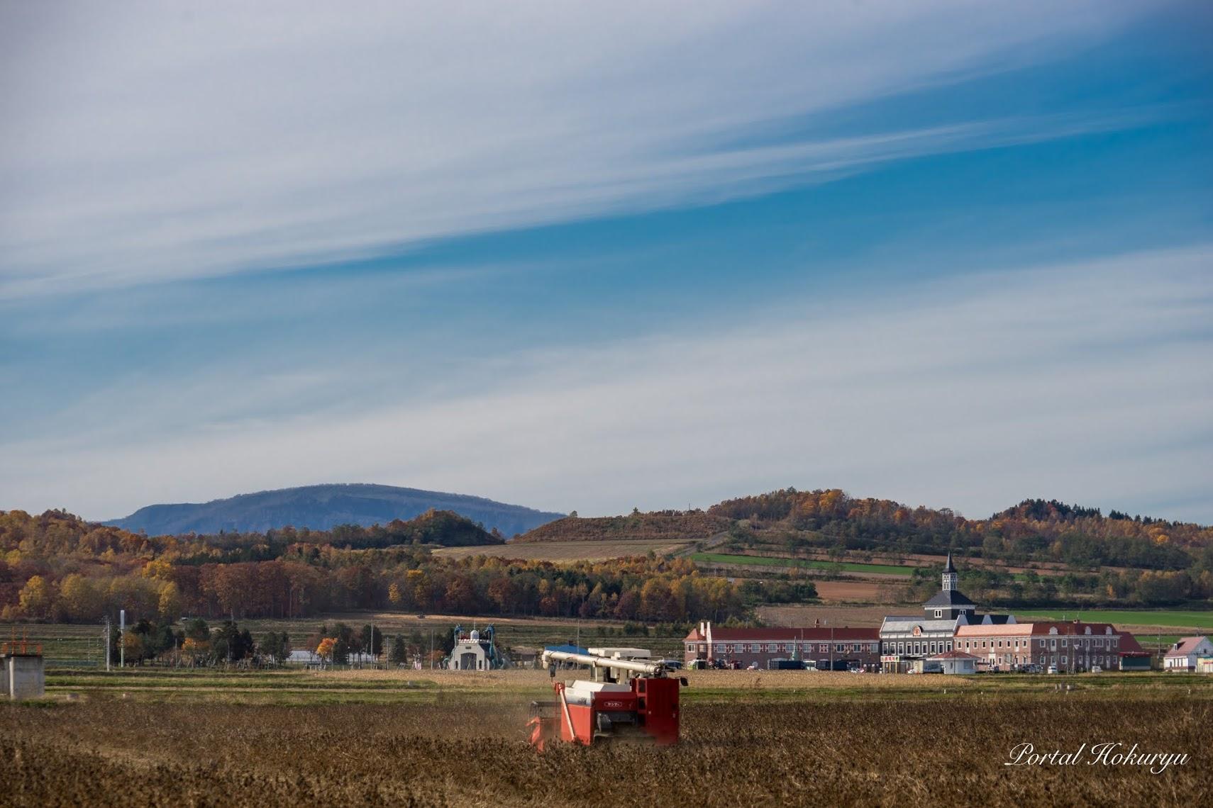 秋の空と大豆収穫