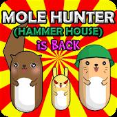 두더지 (MOLE HUNTER-hammer house)