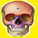 Jogando e Aprendendo Anatomia (Completo) icon