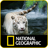 National Geographic: Channel 2018