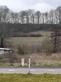 terrain à Anneville-sur-Scie (76)