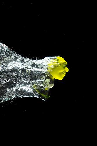 Diving Shrek by Israr Shah - Artistic Objects Toys