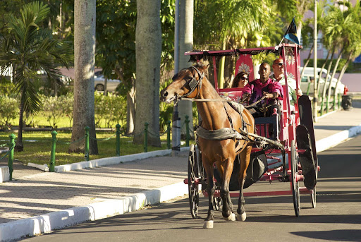 Bahamas-Surrey-Ride.jpg - Go on an enjoyable horse drawn surrey ride through Paradise Island.