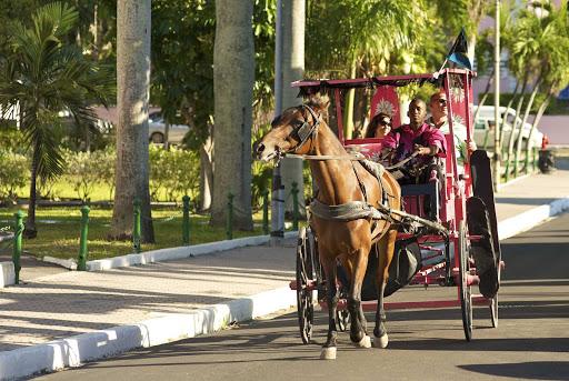 Go on an enjoyable horse drawn surrey ride through Paradise Island.