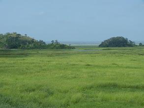 Photo: The fertile plains... unexploited.
