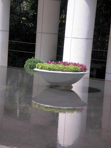 Paz, Jardim do tai chi, hong Kong