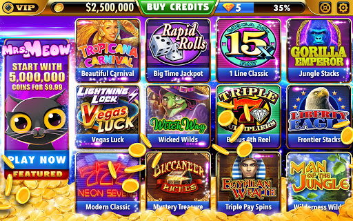 Big Bonus Slots - Free Las Vegas Casino Slot Game  1