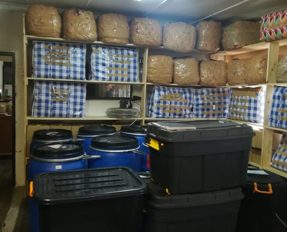 Hawks crush 'dagga factory' in Brits - SowetanLIVE