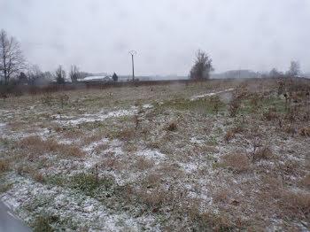terrain à Gorrevod (01)