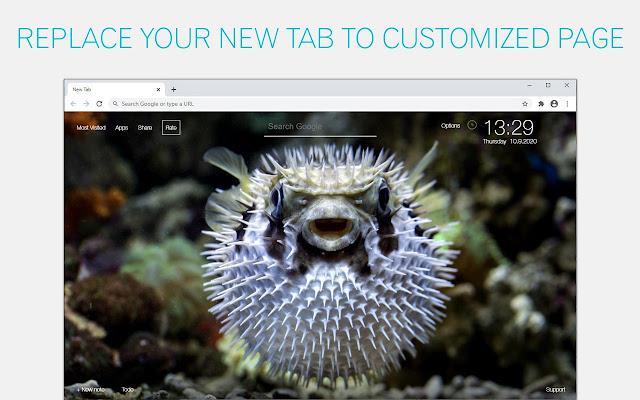 Pufferfish Wallpaper HD Pufferfish New Tab