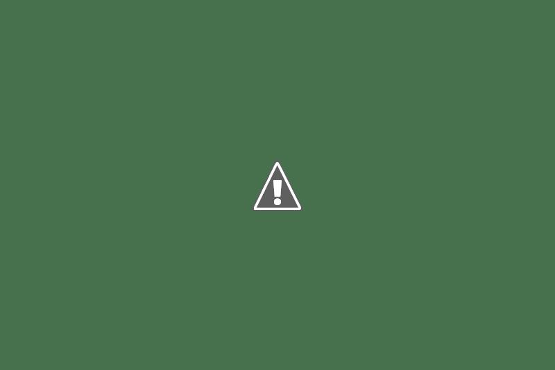 Discos o cassettes