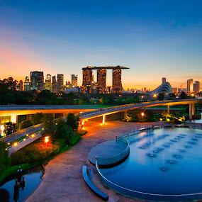 The Marina Barrage by Ram Suson - City,  Street & Park  City Parks ( singapura, water park, marina singapore, parks, singapore sunset, singapore parks, city park, singapore park, barrage, singapore, marina barrage )