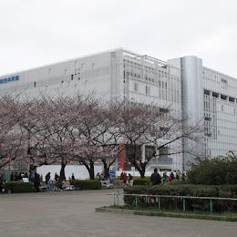 墨田区総合体育館のメイン画像です