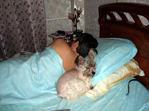 Photo: На папиной подушке лучше всего спится