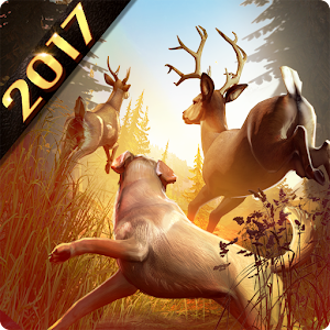 DEER HUNTER 2017  hack