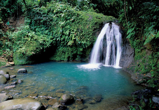 Guadeloupe-ecrevisses-waterfall.jpg - Visit tropical waterfalls in Guadeloupe National Park on Basse-Terre.