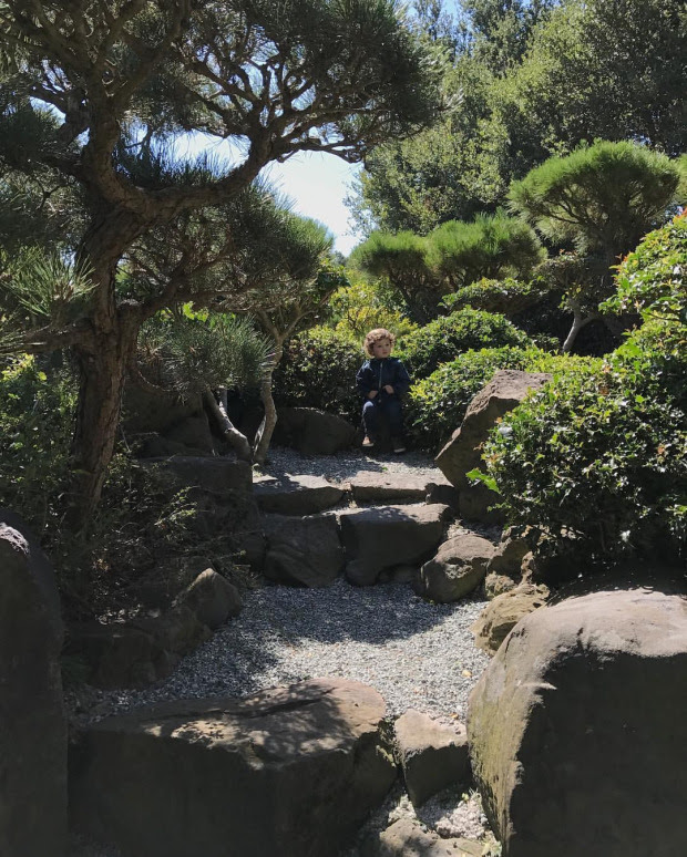 Boy sitting at edge of path surrounded by greenery
