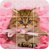 Picture Puzzle: Persian Kittens