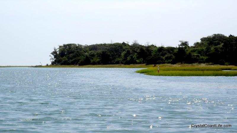 Photo: End of vegetation at Bear Island