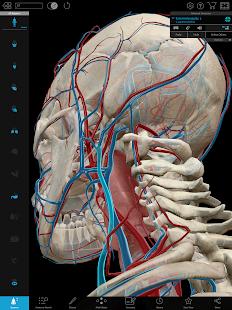 Human Anatomy Atlas 2018: Complete 3D Human Body Screenshot