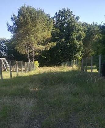 Vente terrain 2554 m2
