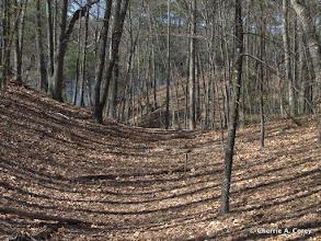 Photo: Walden's sculpted land