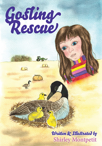 Gosling Rescue cover