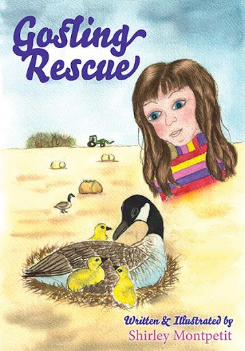 Gosling Rescue cover