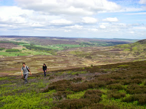 Photo: On the way up Arden Great Moor, looking north. Colourful!